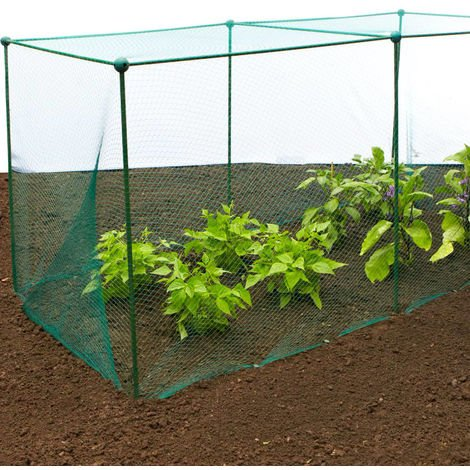 Build-a-Cage Fruit & Veg Cage with Bird Net - 3m x 3m x 1.25m high