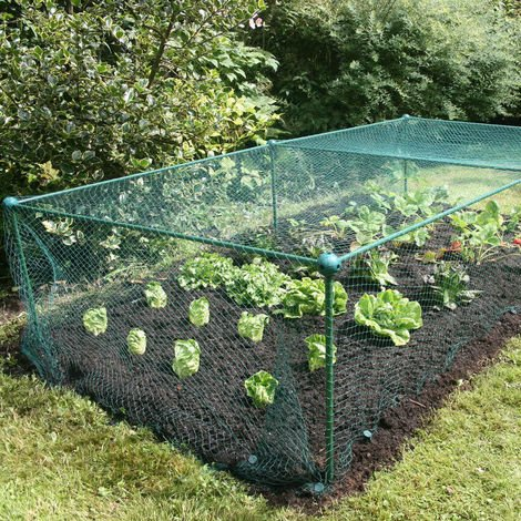 Build-a-Cage Fruit & Veg Cage with Bird Net - 4m x 1m x 0.625m high