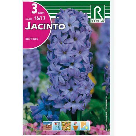 BULBO JACINTO DELFT BLUE AZUL - 3 UD