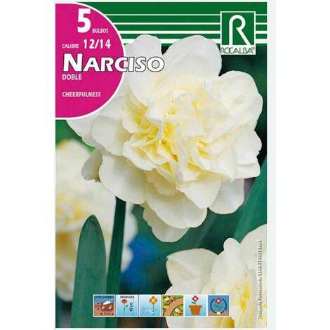 BULBO NARCISO DOBLE CHEERFULNESS BLANCO - 5 UD