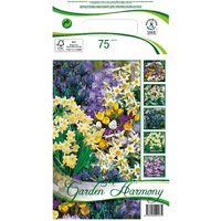Bulbos de flores Rockery Garden 5 variedades