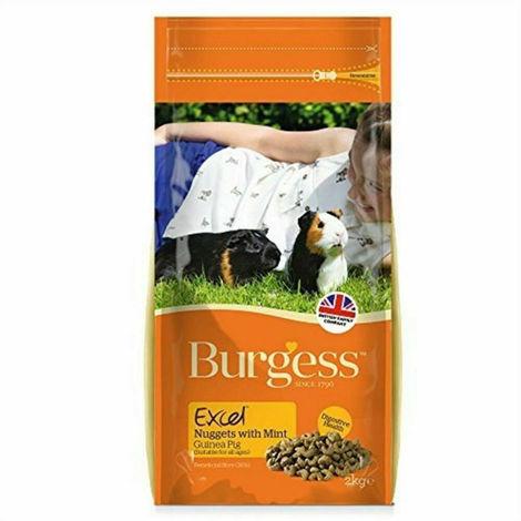 Burgess Excel Cobaya con menta 2Kg
