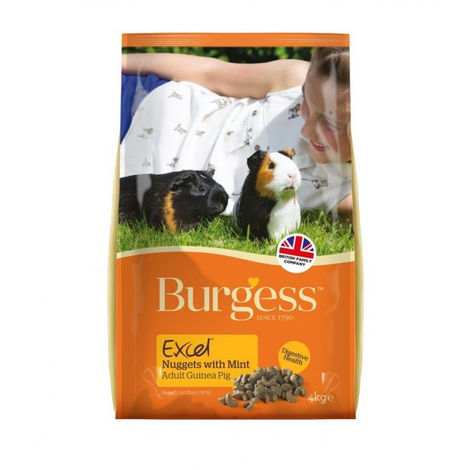 Burgess Excel Cobaya con menta 4Kg