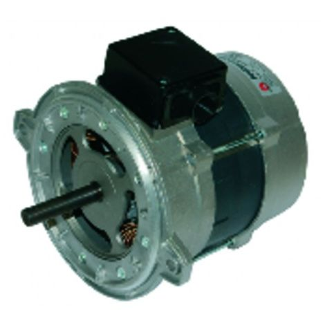 Burner motor - Type 135.2.370.54M - RIELLO : 3006612