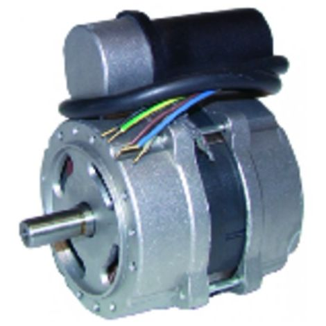 Burner motor - Type 60 .2.125.32M - DIFF for Perge : 990038