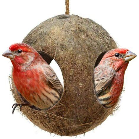 Cabane à oiseaux en coco à 3 trous, parfaite pour cacher le millet et la nidification, maison d'oiseau pour mini condo, décoration d'intérieur ou distributeur de nourriture suspendu $ Hutte en coco à 3 trous, parfaite pour cacher le millet et le matériel