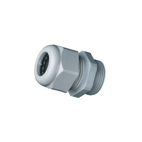 cable gland PG21 without Locknut - Polyamide - IP68 - grey