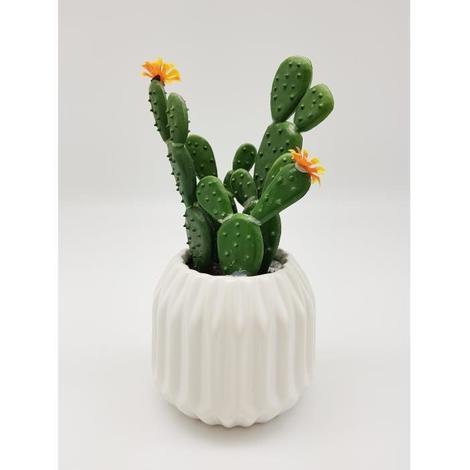 Cactus fleuri dans son contenant Scandinave - H 16 cm - Blanc Aucune