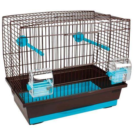 Cage canari Buru brun -turquoise 40 x 25 cm H 35 cm