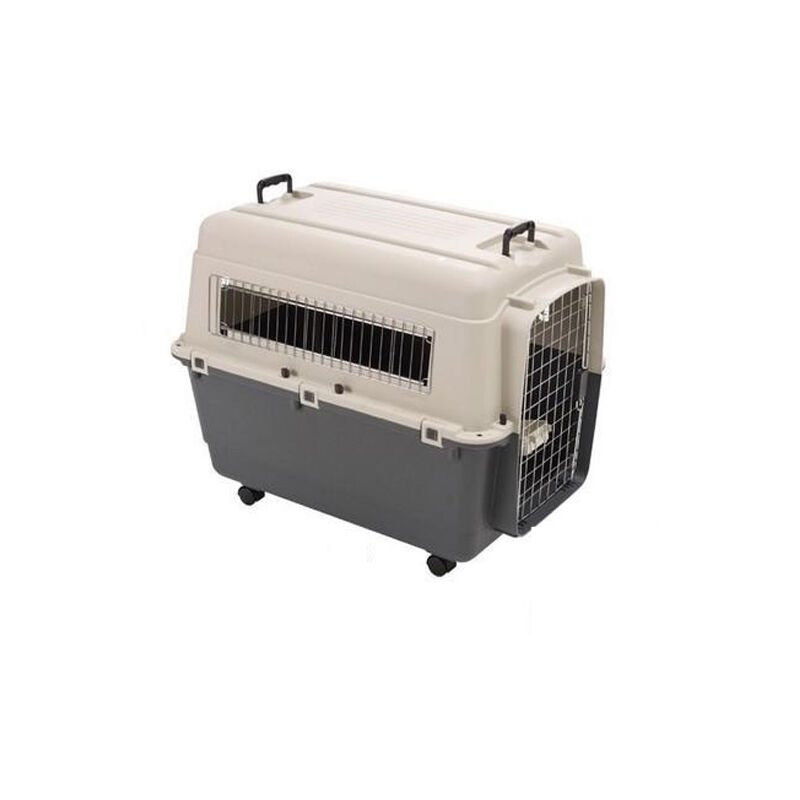 Cage de transport Kennel Box pour chien ou chat (Modèle avion) Désignation : Kennel Box | Type : T6 | Taille : Kennel Box MORIN 900067