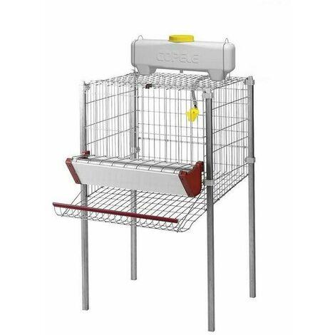 Cage pour poule pondeuses 1 compartiment