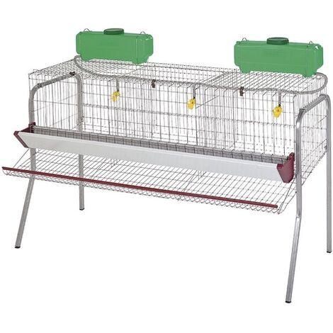Cage pour poule pondeuses 3 compartiments