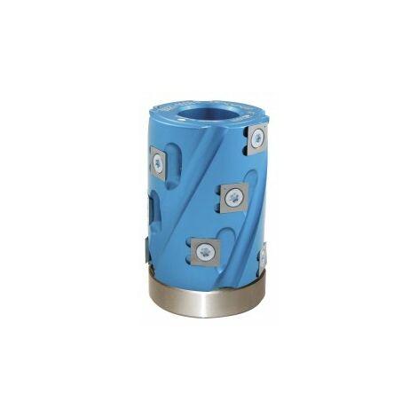 Calibreur de toupie arbre 30 mm hauteur 80 mm 12 plaquettes + roulement