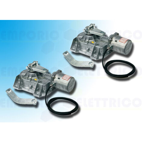 came 2 x irreversible gearmotor 230v 001frog-a frog-a