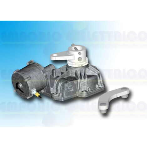 came irreversible gearmotor 230v 001frog-pm6 frog-pm6
