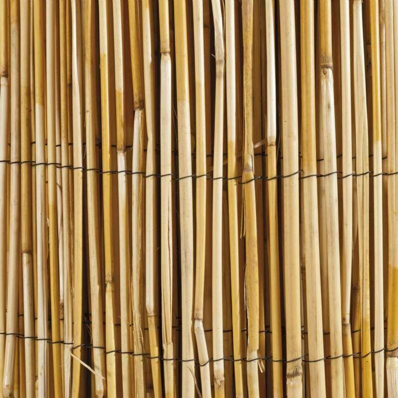 Canisse roseau naturel 1x5m - Marron