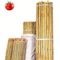 Canne di Bamboo riutilizzabili per sostegno ortaggi pomodori antimuffa