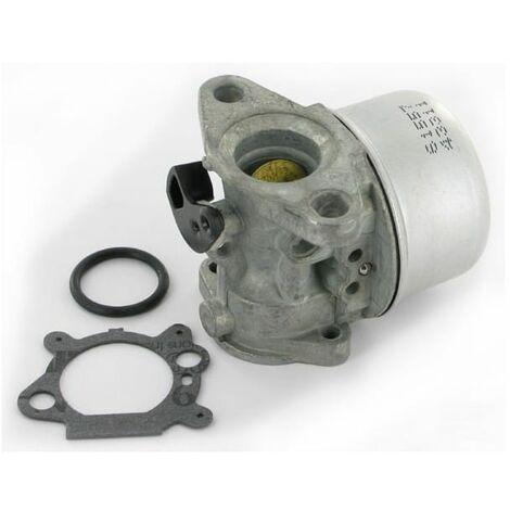 Carburateur BRIGGS ET STRATTON 498170 - 799868