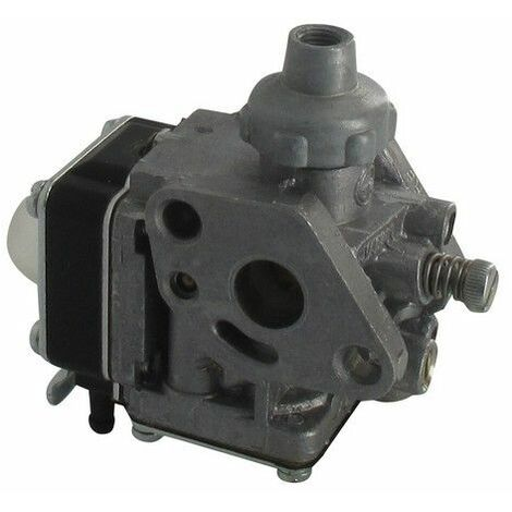 Carburateur pulvérisateur Echo