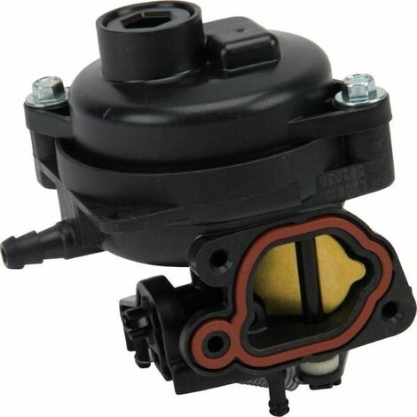 Carburateur tondeuse moteur Briggs & Stratton