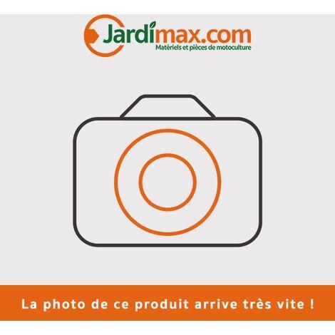 Carburateur Walbro complet WT500