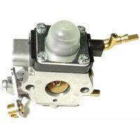 Carburateur Zama complet C1Q-M41