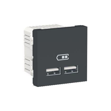 Cargador doble USB 2,1A 2 mod. Antracita SCHNEIDER ELECTRIC NU341854