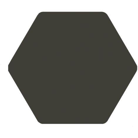 Carrelage tomette anthracite 25x29 cm TOSCANA MARENGO - 1m²