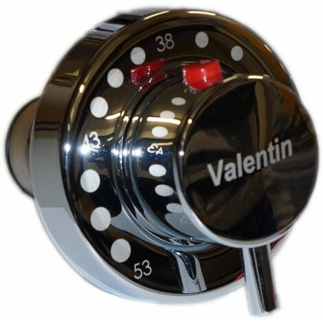 Cartouche Thermostatique VALENTIN
