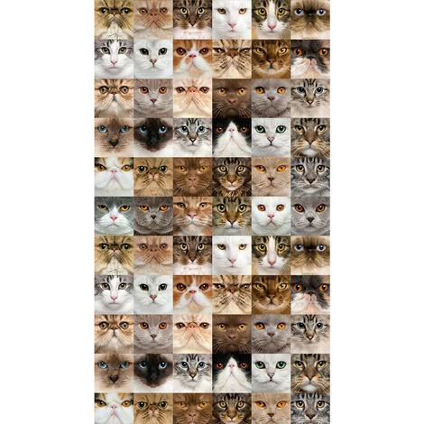 Cats, rideau imprimé 140x245 cm, 1 part