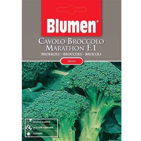 Cavolo broccolo marathon f1