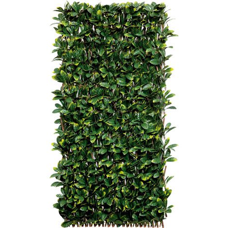 Celosia mimbre c/hojas Lau Willgreen 1X2Mt Nortene