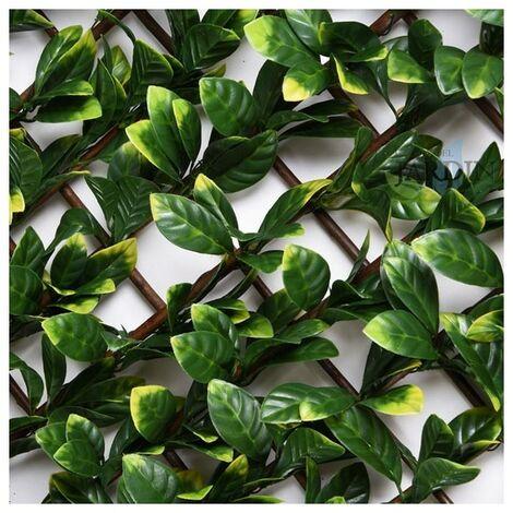 Celosía mimbre hojas de laurel 1 x 2 metros