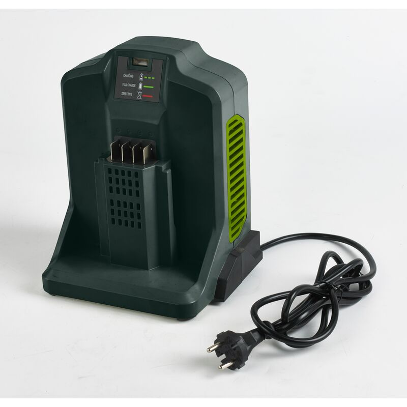 Chargeur de batterie, Central Park - 'DYMA135' - 62V - Polyvalent Pertinence - Vert