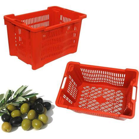 Cesta Raccolta Olive Frutta Verdura Cassa Forata Multiuso Cassetta Impilabile