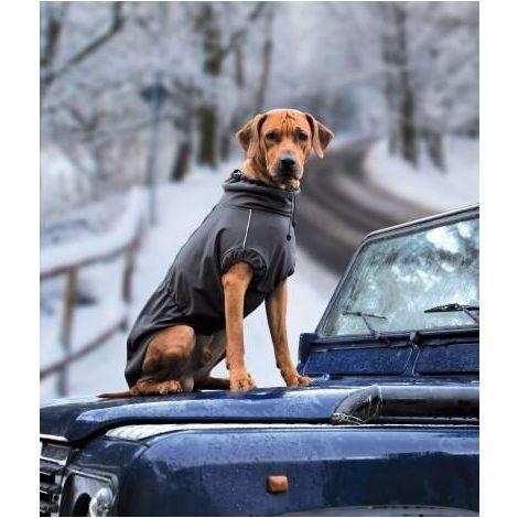 Chaleco para perros Windmaster Negro