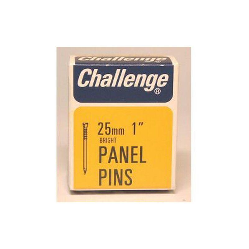 Challenge Panel Pins - Bright Steel (Box Pack) 25mm - 10608
