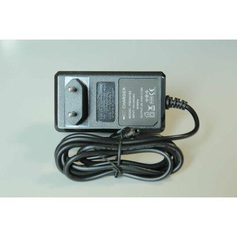 Chargeur adaptable DC62 (244962-35334) (965875-04) Aspirateur 244962_3662894909462 DYSON