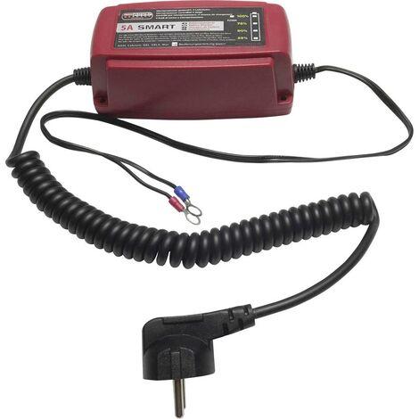 Chargeur automatique, Chargeur Profi Power 2913302 12 V