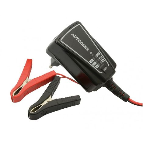 Chargeur Et Maintien De Charge Auto - 6/12V - 1A