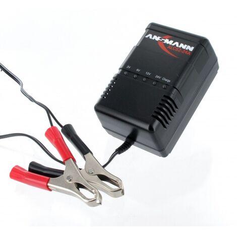 Chargeur pour batterie Plomb 2 à 24V, 2 à 24Ah