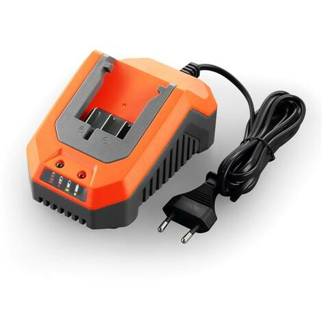 Chargeur rapide 2,4Ah 20V FUXTEC FX-E1LG2A