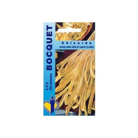 Chicorée à large feuille Barbe de capucin - 6g
