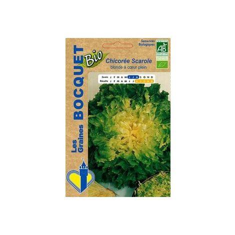 Chicorée Scarole blonde à coeur plein Bio- certifiée ECOCERT FR-BIO-01 - 3g