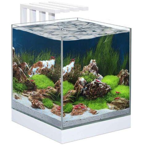 "main image of ""Ciano - Aquarium Nexus Design Équipé de LED + Filtre"""