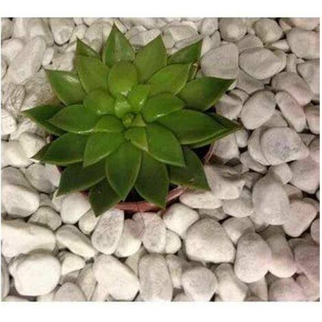 Ciottolo ornamentale bianco carrara Vaga Gruppo Mapei