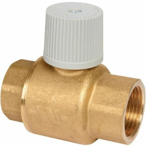 Clapet anti-thermosiphon - Watts industries