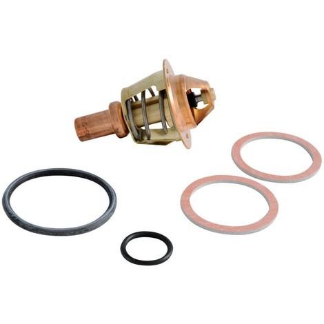 Clapet thermostat 60°C+ joint Réf. F3AA40021 FRISQUET