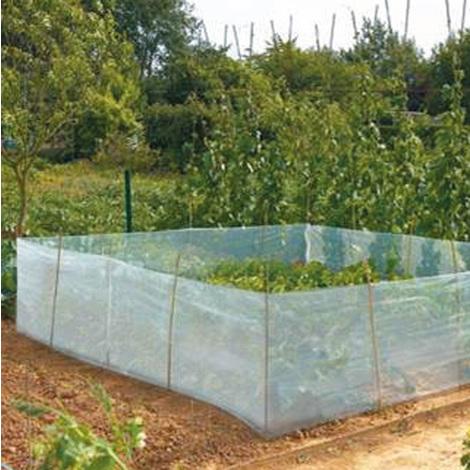 CLIMABIO CAROTTE - Le filet anti-insectes de 0,50 m x 15 m - Protection des végétaux