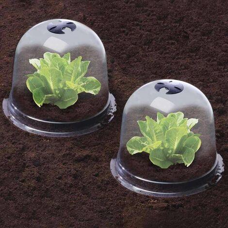 Cloches à salades plastique - Lot de 6 translucide
